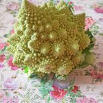 BROCCOLO ROMANESCO 1